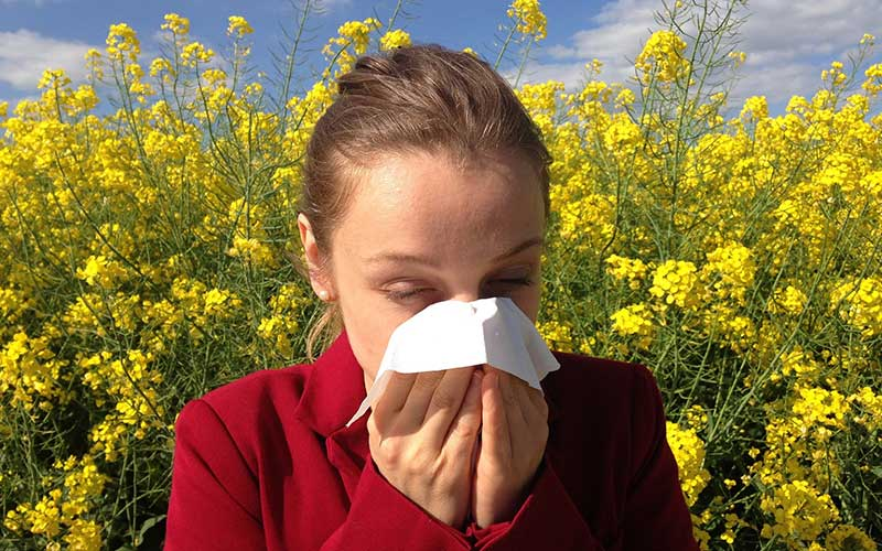 Allergic-Rhinitis-Causes