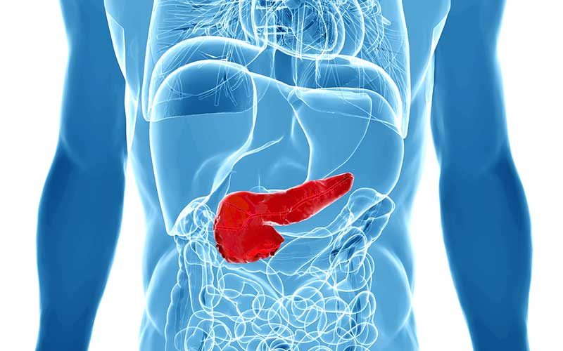 pancreatic cancer risk factors